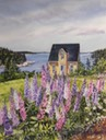 House and Lupins near Sheet Harbour